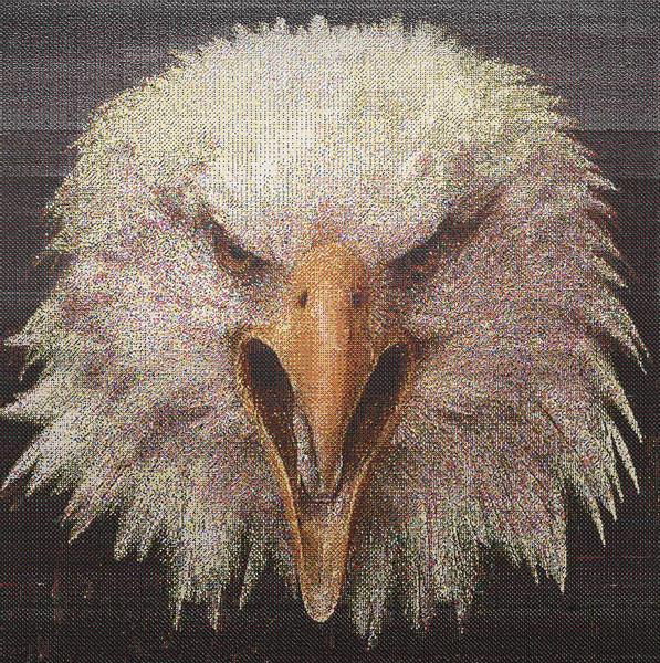 eagle_acryl_a_l_150x150