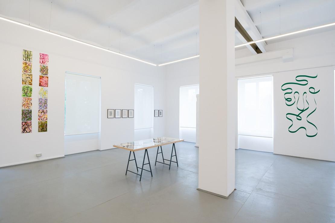 Installation view, photo Cătălin Georgescu