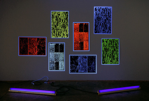 Jeremy Shaw, Representative Measurements, fluorescent silkscreen posters with UV light, 2008, dimensions variable