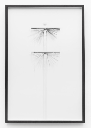 Lisa Lapinski, Untitled (ref 7), black and white photograph, framed, 2013, 101.6 x 67.3 cm, unique
