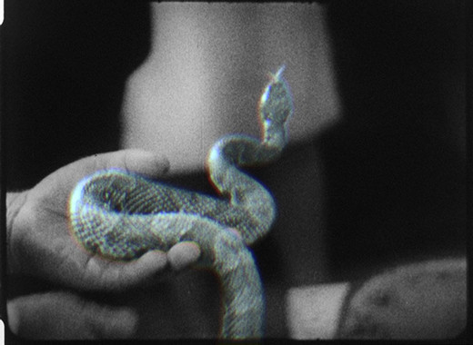 Jeremy Shaw, Quickeners, single channel video with original soundtrack, 36'12'', 2014, 1/5 + 2AP
