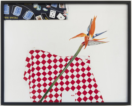 "<span class=""artists work-caption"">Annette Kelm</span><span class=""title work-caption"">""Untitled"" (Flower)</span><span class=""technique work-caption"">c-print, framed</span><span class=""year work-caption"">2010</span><span class=""dimensions work-caption"">49.78 x 61.72 cm</span><span class=""edition work-caption"">4/5 + 2 AP</span>"