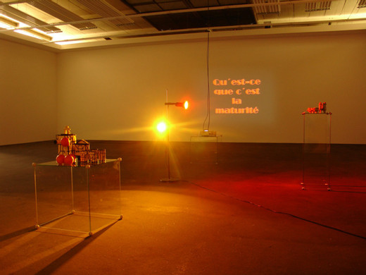 Manuel Graf, Qu'est-ce que c'est la maturité?, video installation, projector, ceramic, Plexiglas, plastic, lamp, light bulb, 2008, dimensions variable, unique