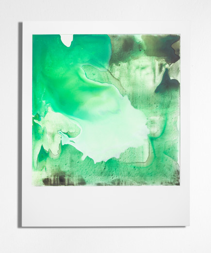 Johannes Wohnseifer, Polaroid Painting, acrylic, pigment on  MDF, powder coated aluminium frame , 2019, 122 x 100 cm, unique