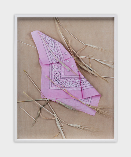 Annette Kelm, Paisley and Wheat Pink, c-print, framed, 2013, 58.5 x 46.7 cm, 6 + 2AP