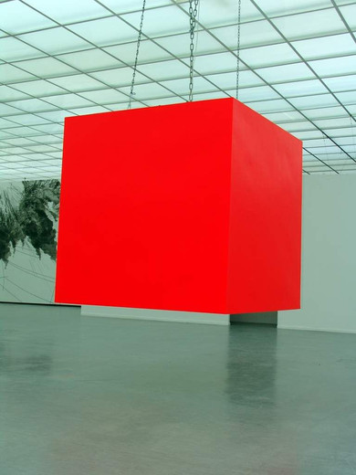 Johannes Wohnseifer, Black Box, acrylic (RAL 3026), wood, metal, neon, 8 framed offset prints, 2004, 200 x 200 x 200 cm