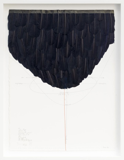 Jorinde Voigt, From Above, ink, goose feathers, oil crayon, India ink, pencil on paper, 2015, 77.5 x 57.5 cm, unique