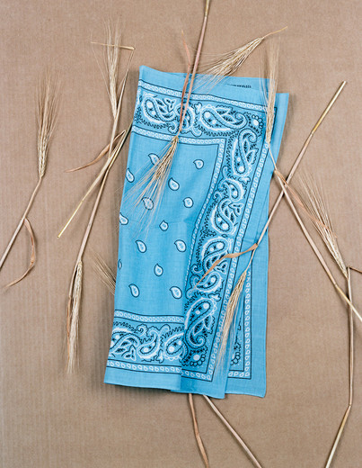 "<span class=""artists work-caption"">Annette Kelm</span><span class=""title work-caption"">Paisley and Wheat Baby Blue</span><span class=""technique work-caption"">c-print, framed</span><span class=""year work-caption"">2013</span><span class=""dimensions work-caption"">58 x 45.5 cm</span><span class=""edition work-caption"">4/6 + 2AP</span>"