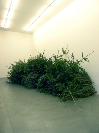 Tue Greenfort, Flexible Weihnachtsbaum-Einsammlung, wall text, christmas trees, 2005, dimensions variable
