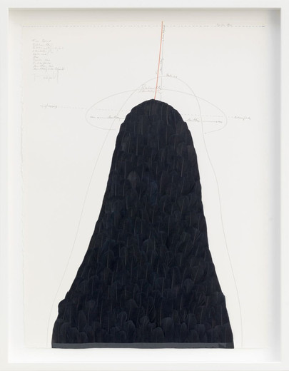 Jorinde Voigt, From Behind, ink, goose feathers, oil crayon, India ink, pencil on paper, 2015, 77.5 x 57.5 cm, unique