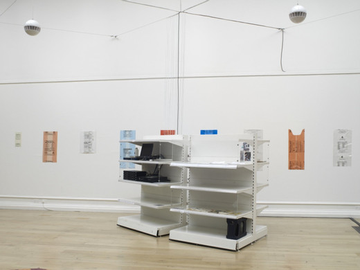 Tue Greenfort, Supermarket Shelving System, White coated iron, 12 versions of Limits to Growth, magnets, ball bearings, packaging, found objects, photos,  Audio System, 2011, dimensions variable