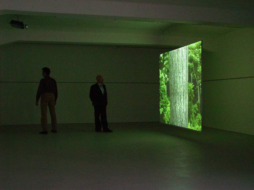 David Zink Yi, Alrededor del dosel / Umgehen der Baumkronen, two-channel video installation, sound, wall text, 2004, 0 x 0 x 0 cm, 1/5 + 2AP