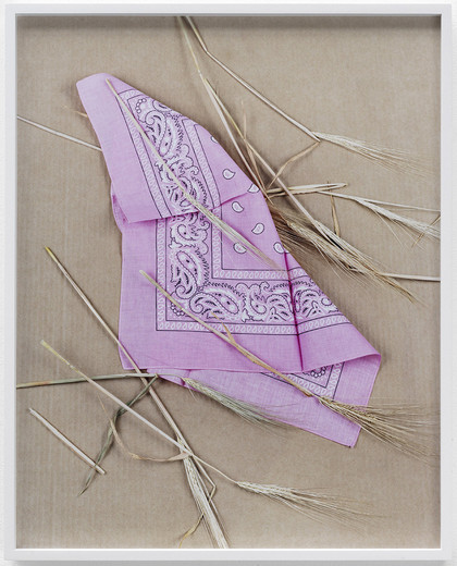 "<span class=""artists work-caption"">Annette Kelm</span><span class=""title work-caption"">Paisley and Wheat Pink</span><span class=""technique work-caption"">c-print, framed</span><span class=""year work-caption"">2013</span><span class=""dimensions work-caption"">58.5 x 46.7 cm</span><span class=""edition work-caption"">4/6 + 2AP</span>"