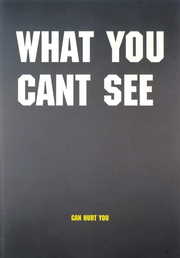 Johannes Wohnseifer, What you can't see, acrylic on aluminium, 2002, 140 x 100 x 0 cm
