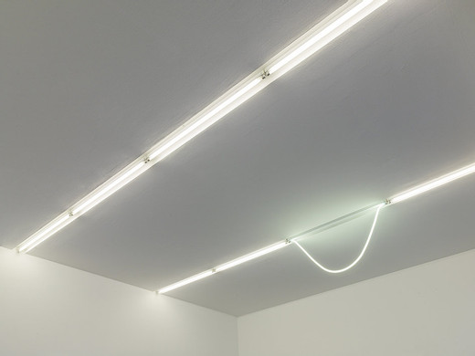 Alicja Kwade, Heavy light (3), neon tube, socket, 2015, 58 x 145 x 4 cm, unique