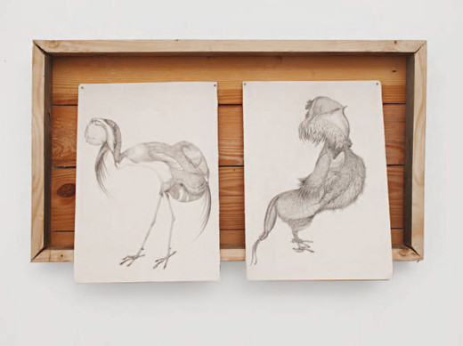 Petrit Halilaj, Un gallo borghese, drawings on paper, wood frame, 2009, 28.5 x 20.5 cm, unique