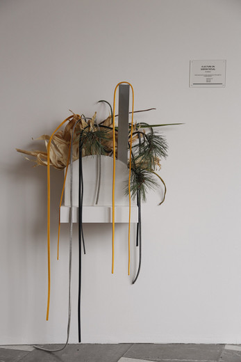 Camille Henrot, A Lecture on Serpent Ritual, Aby Warburg, ikebana, 2014, dimensions variable, unique