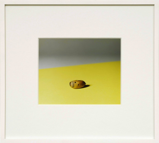 Annette Kelm, First Picture for a Show, c-print, 2007, 16 x 20 cm, 5 + 2 AP