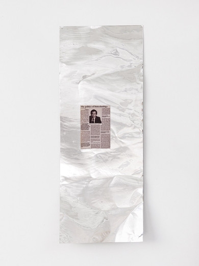 Tue Greenfort, 'The politics of biotechnology' (2001), inkjet transfer on metal sheets, 2014, 120 x 46 x 10 cm, unique