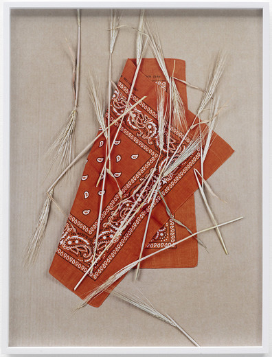 "<span class=""artists work-caption"">Annette Kelm</span><span class=""title work-caption"">Paisley and Wheat, Orange # 1</span><span class=""technique work-caption"">c-print, framed</span><span class=""year work-caption"">2013</span><span class=""dimensions work-caption"">61 x 45.5 cm</span><span class=""edition work-caption"">5/6 + 2AP</span>"