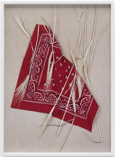 "<span class=""artists work-caption"">Annette Kelm</span><span class=""title work-caption"">Paisley and Wheat Red</span><span class=""technique work-caption"">c-print, framed</span><span class=""year work-caption"">2013</span><span class=""dimensions work-caption"">59 x 42.8 cm</span><span class=""edition work-caption"">5/6 + 2AP</span>"