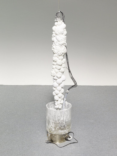 Tue Greenfort, UREA Crystal Fountain I, water pump, acrylic glass, urea, polyvenyl alcohol, tubes, 2014, dimensions variable, unique