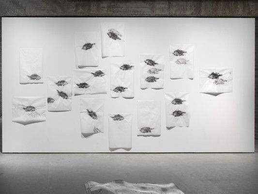 Installation View,  Tilapia (ink on rice paper, 50x69 cm, 2017) and Seascape  (glass, 80 x 90 x 15 cm, 2017)