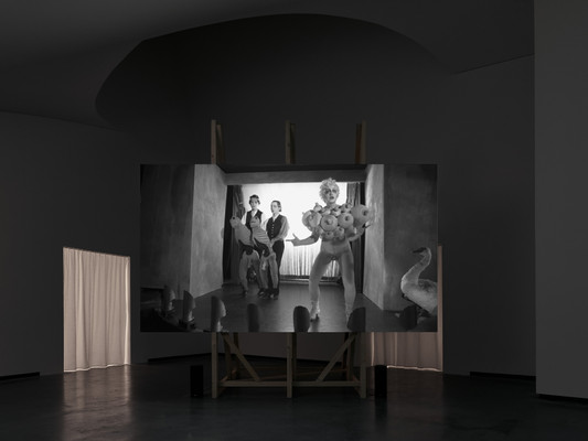 Installation view, The Inner Skin – Art and Shame, Marta Herford, Herford, March– June 2017 Photo: def image