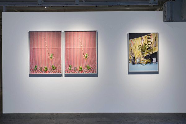 2020_Annette Kelm_Apples_KOENIG TOKIO_exhibition_view_Ikki Ogata (42)
